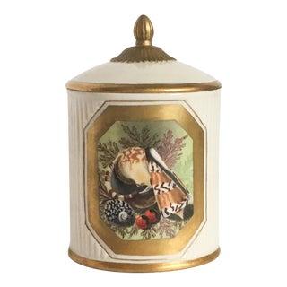 Mottahedeh Seashell Jar For Sale