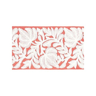 Scalamandre Coventry Embroidered Coral Tape For Sale