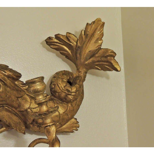 Early 19th C American Dolphin Giltwood Sconces For Sale In Charleston - Image 6 of 9