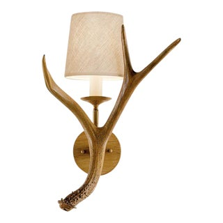 Deer Antler Wall Light With Shade For Sale
