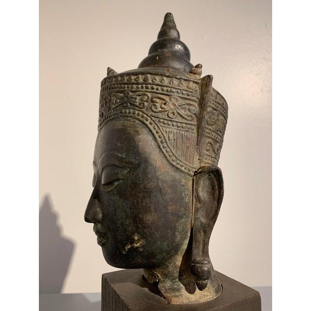 Bronze Vintage Thai Ayutthaya Style Bronze Buddha Head For Sale - Image 7 of 11