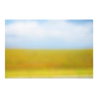 """Cheryl Maeder """"Everglades I"""" Photographic Watercolor Print For Sale"""