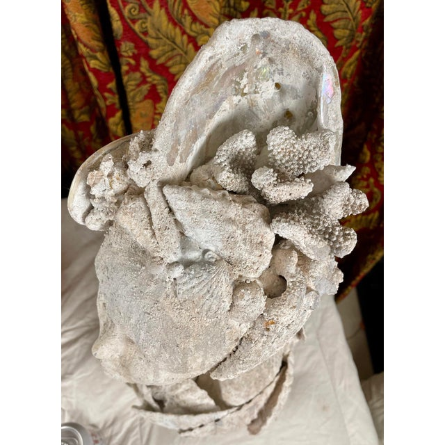 "1990s ""Sea Queen"" Woman Bust Sea Shell Sculpture #3 For Sale - Image 9 of 11"