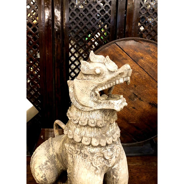 19th Century Antique Chinese Terra Cotta Foo Dogs-a Pair For Sale - Image 5 of 13