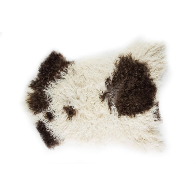 """Contemporary Contemporary Natural Wool Sheepskin Pelt -2'3""""x3'0"""" For Sale - Image 3 of 6"""
