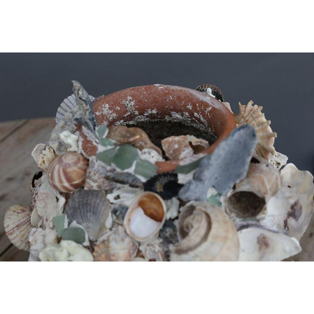 White Shell-Covered Terracotta Cache-Pots For Sale - Image 8 of 9