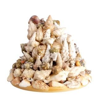 Bob Gaylon Nautical Seashell Sculpture For Sale