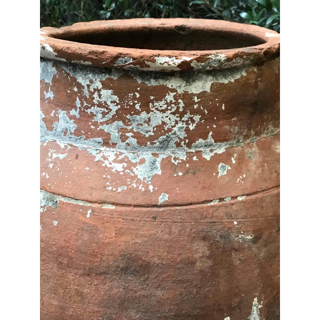 Large 19th Century Terra Cotta Pot With Tapered Base From France For Sale - Image 4 of 5