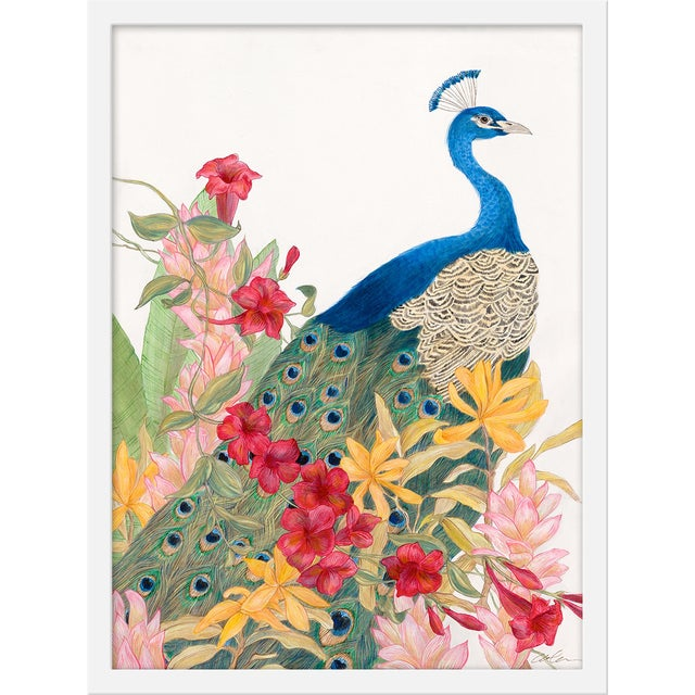 """Medium """"Peacock Paradise"""" Print by Allison Cosmos, 18"""" X 24"""" For Sale"""