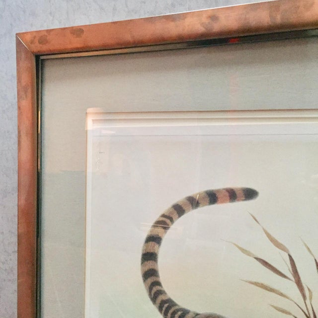 "White Copper Framed John Ruthven ""Bengal Tiger"" Lithograph From 1970s Safari Series For Sale - Image 8 of 9"