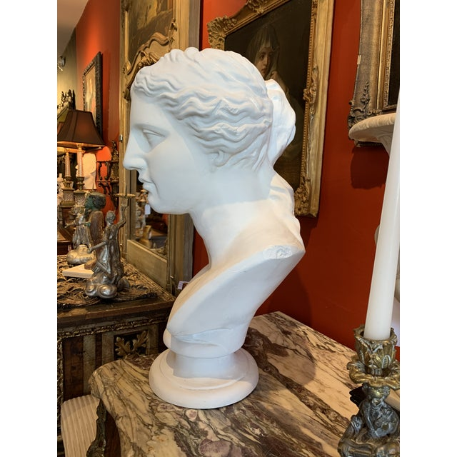 Plaster Neoclassical Style Large Plaster Bust of Aphrodite For Sale - Image 7 of 11