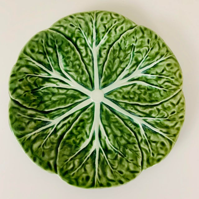 Boho Chic Vintage Williams Sonoma Green Cabbage Plates - Set of 4 For Sale - Image 3 of 10