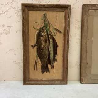 1890s Antique Fish Trophy French Chromolithograph Print Preview