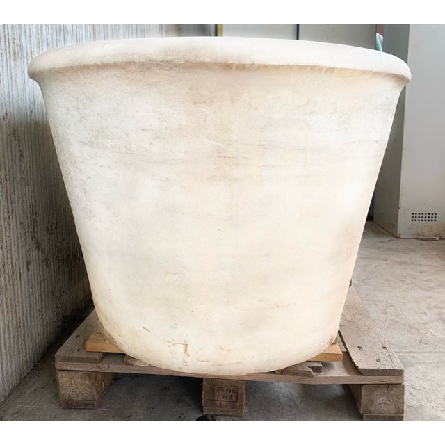 Antique White 19th Masterpiece Carrara Marble Oval Bathtub For Sale - Image 8 of 10