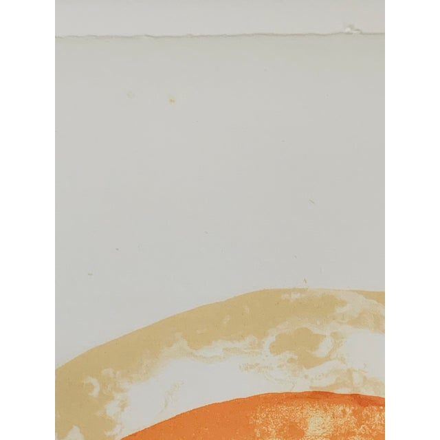 """""""Rainbow"""" Jim Dine Signed Limited Edition Lithograph, 1972 For Sale - Image 10 of 13"""