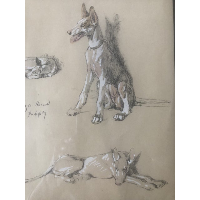 If you love dogs, you can't have enough dog art in your collection. This is an original, though unsigned, pastel and ink...