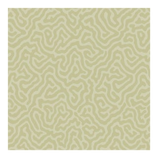 Cole & Son Coral Wallpaper Roll - Old Olive For Sale