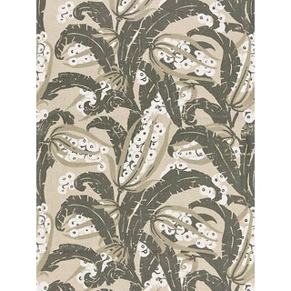 Sample, Scalamandre Tropique, Stone Fabric For Sale