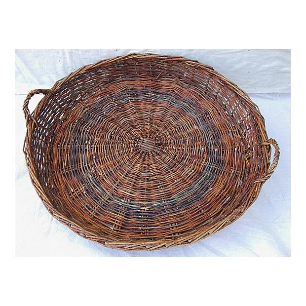 Large French Woven Willow Grape Harvest Basket - Image 2 of 9