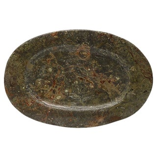 Vintage Natural Stone Ammonite Fossils Platter For Sale