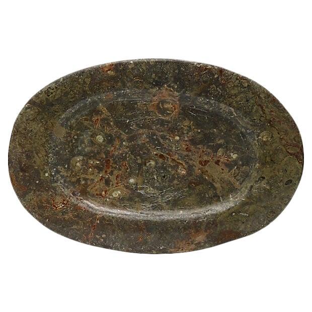 Vintage Natural Stone Ammonite Fossils Platter For Sale