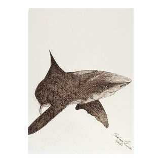 Shark Pen & Ink Drawing For Sale