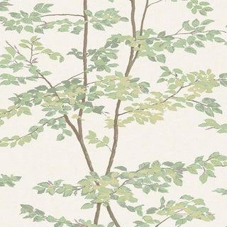 Lewis & Wood Beech Document Green Botanic Style Wallpaper Sample For Sale