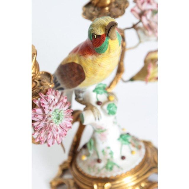 Gold Pair of Early 20th Century Italian Porcelain Birds Mounted as Candelabra For Sale - Image 8 of 13