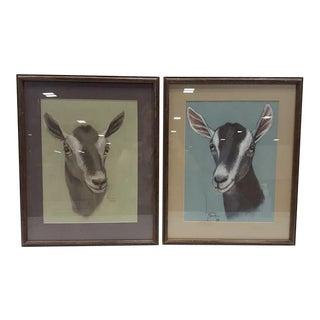 Vintage Framed Goat Pastel Prints - a Pair For Sale