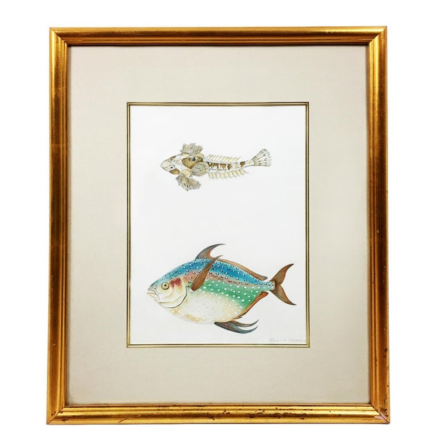 Early 21st Century Rainbow Porgy & Sea Robin Goauche Painting With Gold Frame For Sale - Image 5 of 5