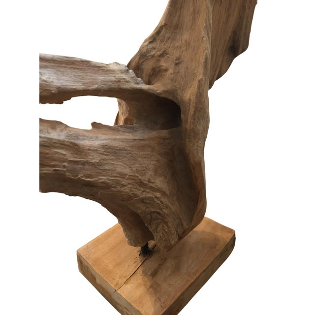 Mid 20th Century Midcentury Mounted Driftwood Specimen From the Washington Coastline For Sale - Image 5 of 9