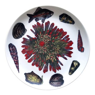 Vintage Piero Fornasetti Conchiglie Pattern Plate decorated with Sea Anemones, Urchins & Shells, Circa 1960-70's For Sale