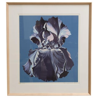 "Large framed Serigraph ""Blue Iris on Blue"" by Lowell Nesbitt For Sale"