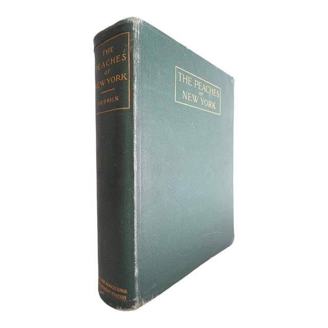 1910s Large Illustrated Book, Hendrick's the Peaches of New York, 1st Edition For Sale