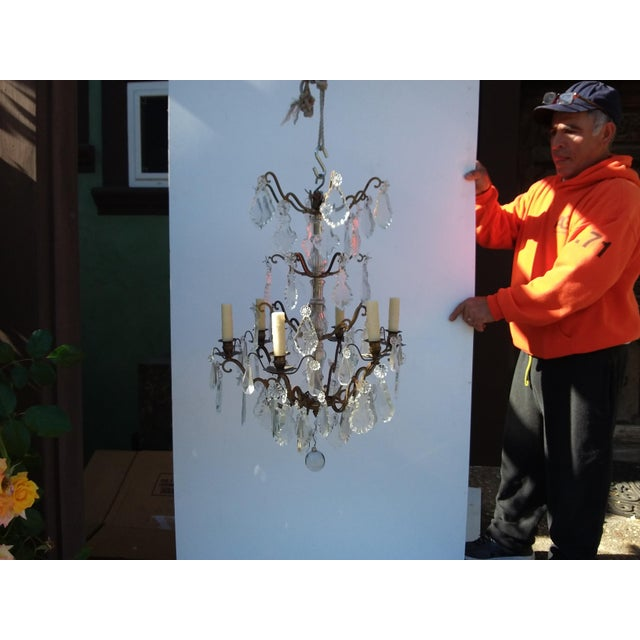 Classic French style crystal chandelier with six lights and wax candle covers.