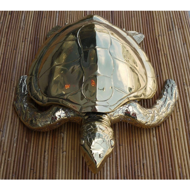 Mid-Century Modern Stunning Large Scale Brass Sea Turtle Box For Sale - Image 3 of 6
