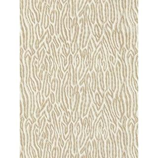Sample, Scalamandre Faux Bois Velvet, Fog Fabric For Sale
