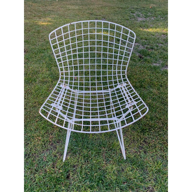 Harry Bertoia Late 20th Century Bertoia Outdoor Side Chairs- Set of 12 For Sale - Image 4 of 9