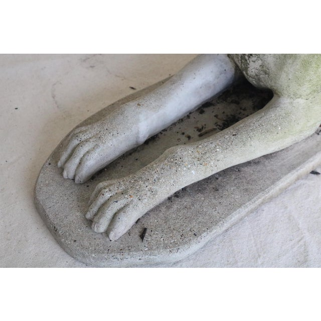 Concrete Early 20th Century Reclining Whippet English Cast Stone Garden Ornament For Sale - Image 7 of 8