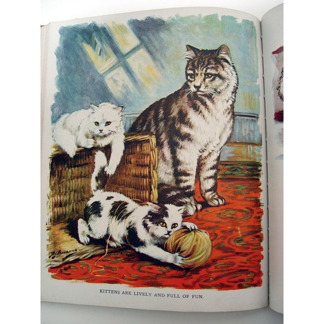 1928 Animal Friends Story Book For Sale - Image 9 of 10