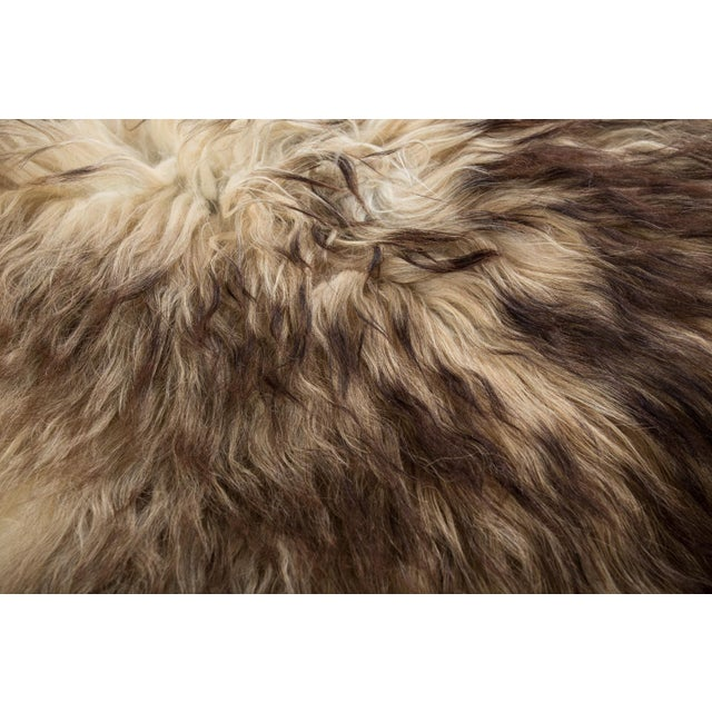 "2010s Contemporary Natural Wool Sheepskin Pelt - 2'0""x3'0"" For Sale - Image 5 of 7"