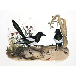 Jerome Trollier Lithograph - Two Birds For Sale