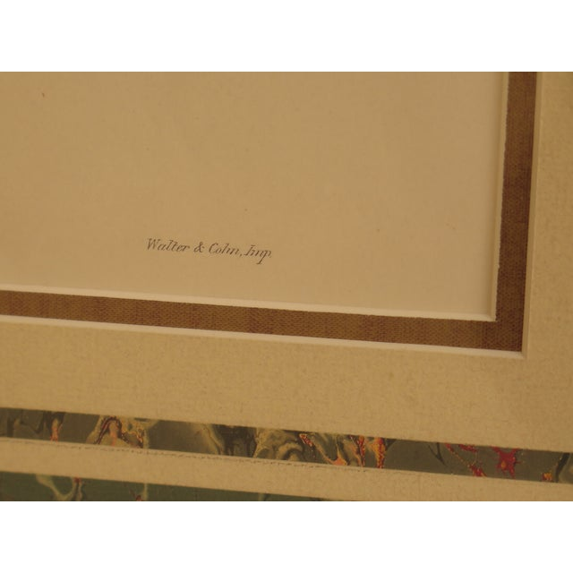 Original John Gould Matted & Gold Framed Colored Etchings - a Pair For Sale In Philadelphia - Image 6 of 13