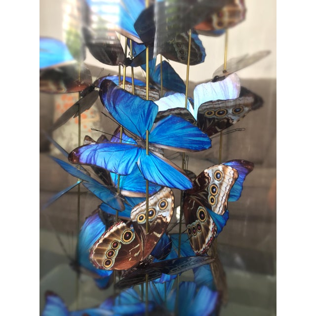 Customizable: Airborne - handcut paper based butterflies - Image 3 of 5
