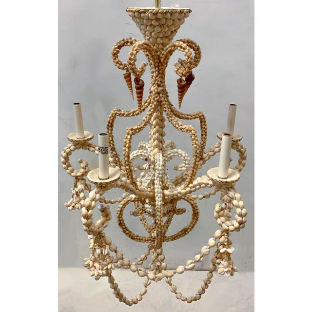 Boho Chic Large Scale Shell Chandelier -5 Arm For Sale - Image 3 of 10