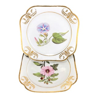 Early 19th C English Porcelain Botanical Dessert Plates - a Pair For Sale