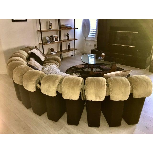 De Sede Ds600 Non-Stop 19 Piece Sofa For Sale In Sacramento - Image 6 of 10