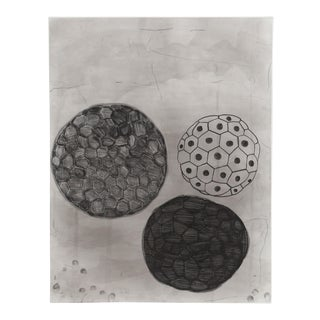 Terry Winters - #5 From Album Portfolio Etching With Aquatint For Sale