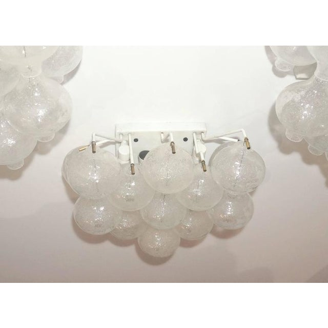 """Mid-Century Modern Set of Four Large-Scale """"Tulipan"""" Wall Sconces, Murano Glass, Austria, Kalmar For Sale - Image 3 of 9"""