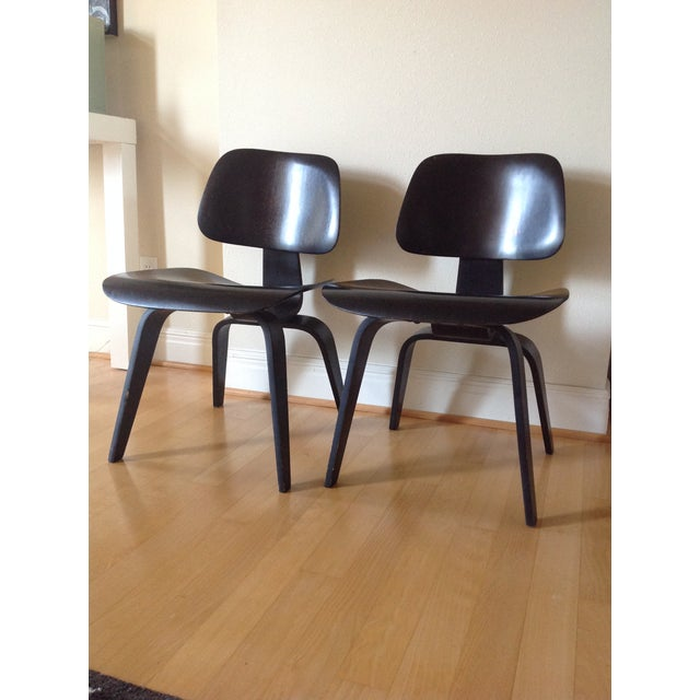 Mid-Century Modern Charles Eames Dcw for Evans Products Co. & Herman Miller - A Pair For Sale - Image 3 of 11
